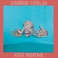 Screaming_Females_RoseMountain_cover