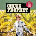 chuckprophet_bobbyfullerdiedforyoursins_cover